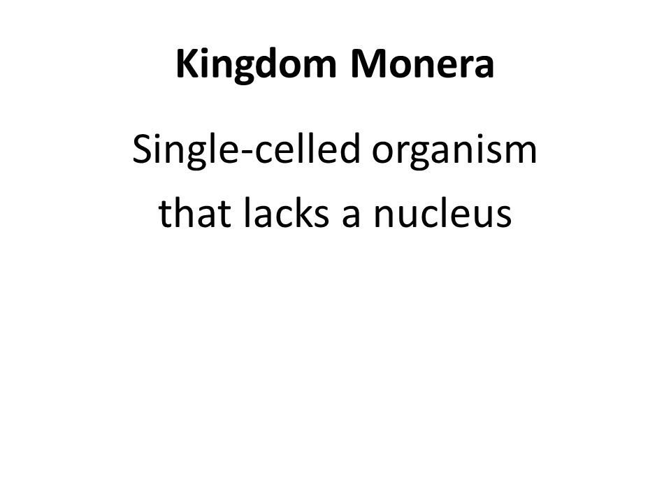 Kingdom Monera Single-celled organism that lacks a nucleus