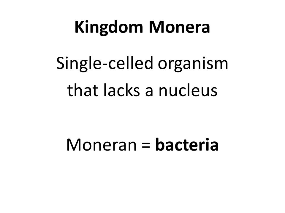 Kingdom Monera Single-celled organism that lacks a nucleus Moneran = bacteria