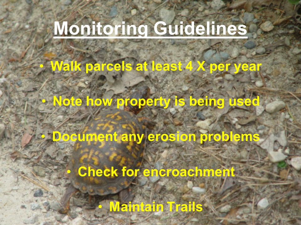 Monitoring Guidelines Walk parcels at least 4 X per year Note how property is being used Document any erosion problems Check for encroachment Maintain Trails