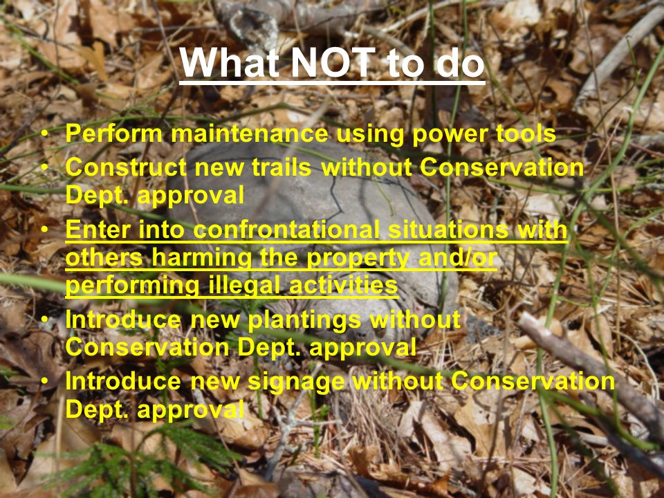 What NOT to do Perform maintenance using power tools Construct new trails without Conservation Dept. approval Enter into confrontational situations wi
