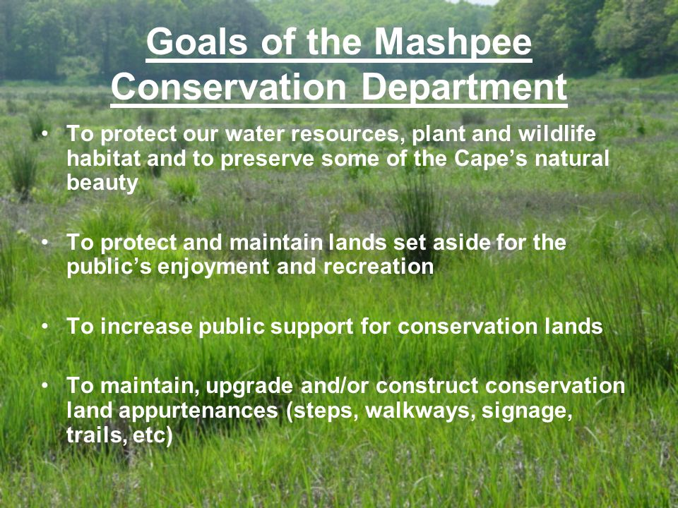 Goals of the Mashpee Conservation Department To protect our water resources, plant and wildlife habitat and to preserve some of the Cape's natural beauty To protect and maintain lands set aside for the public's enjoyment and recreation To increase public support for conservation lands To maintain, upgrade and/or construct conservation land appurtenances (steps, walkways, signage, trails, etc)