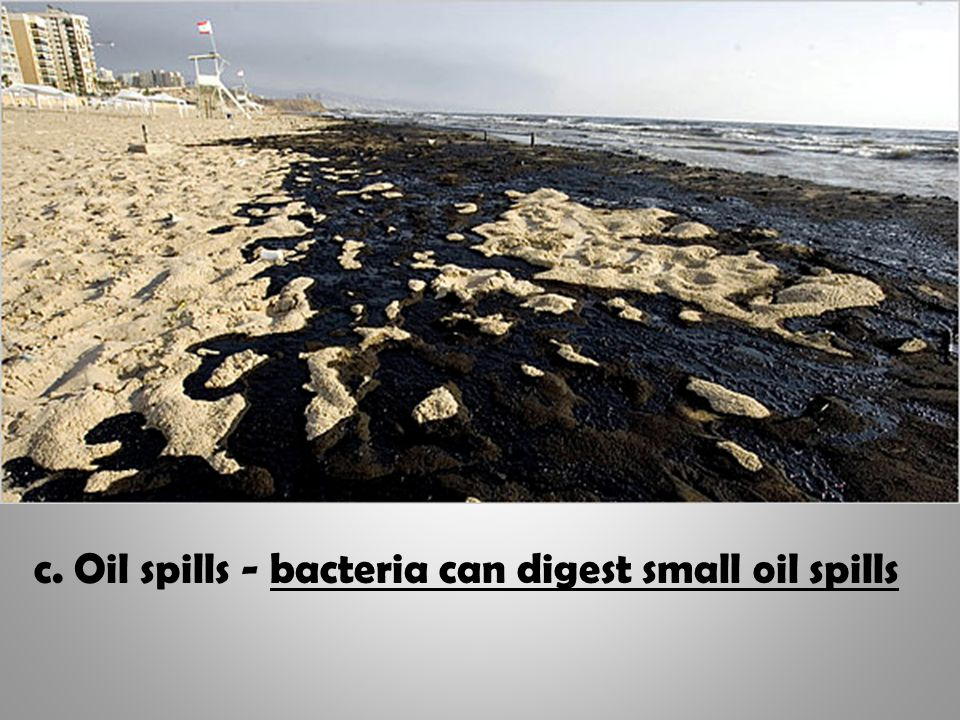 c. Oil spills - bacteria can digest small oil spills