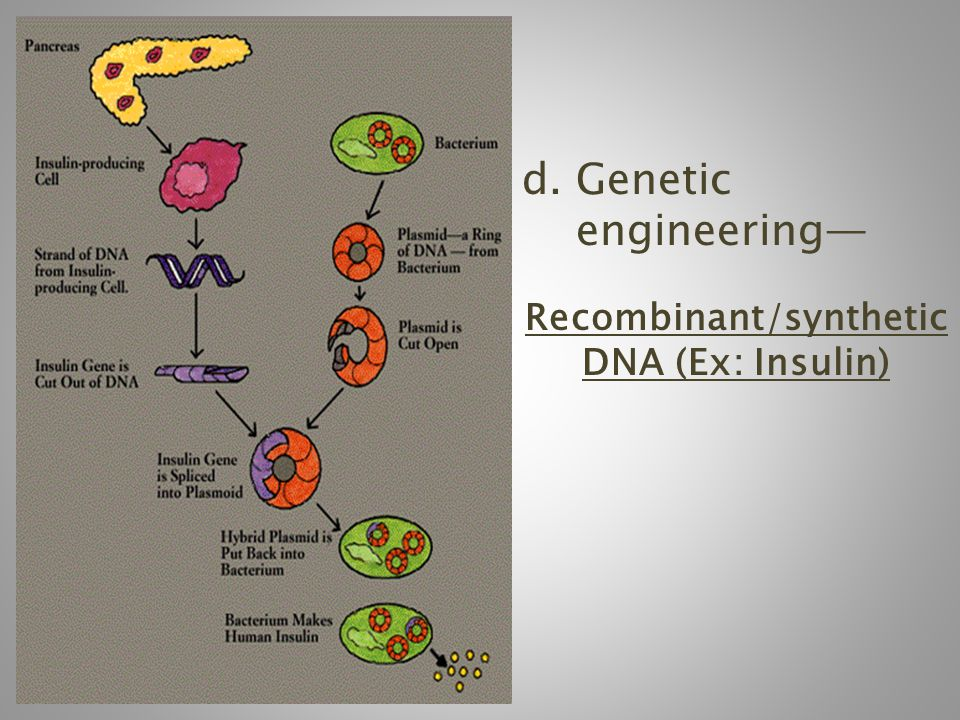 d. Genetic engineering— Recombinant/synthetic DNA (Ex: Insulin)