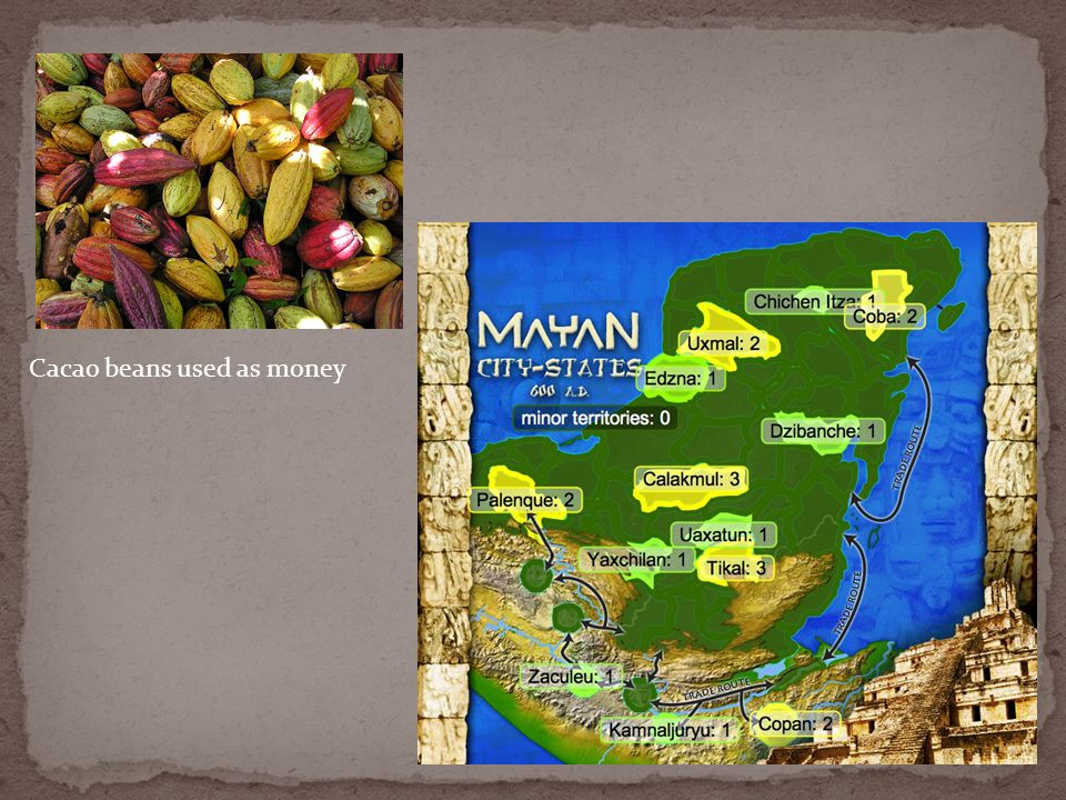 Cacao beans used as money