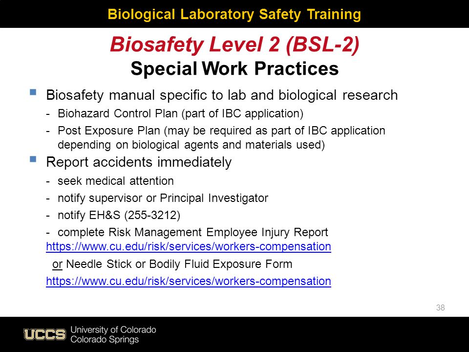Biosafety Level 2 (BSL-2) Special Work Practices Biological Laboratory Safety Training  Biosafety manual specific to lab and biological research - Bi