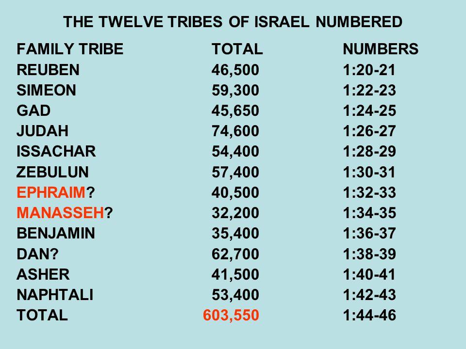 THE TWELVE TRIBES OF ISRAEL NUMBERED FAMILY TRIBE TOTALNUMBERS REUBEN 46,5001:20-21 SIMEON 59,3001:22-23 GAD 45,6501:24-25 JUDAH 74,6001:26-27 ISSACHAR 54,4001:28-29 ZEBULUN 57,4001:30-31 EPHRAIM.