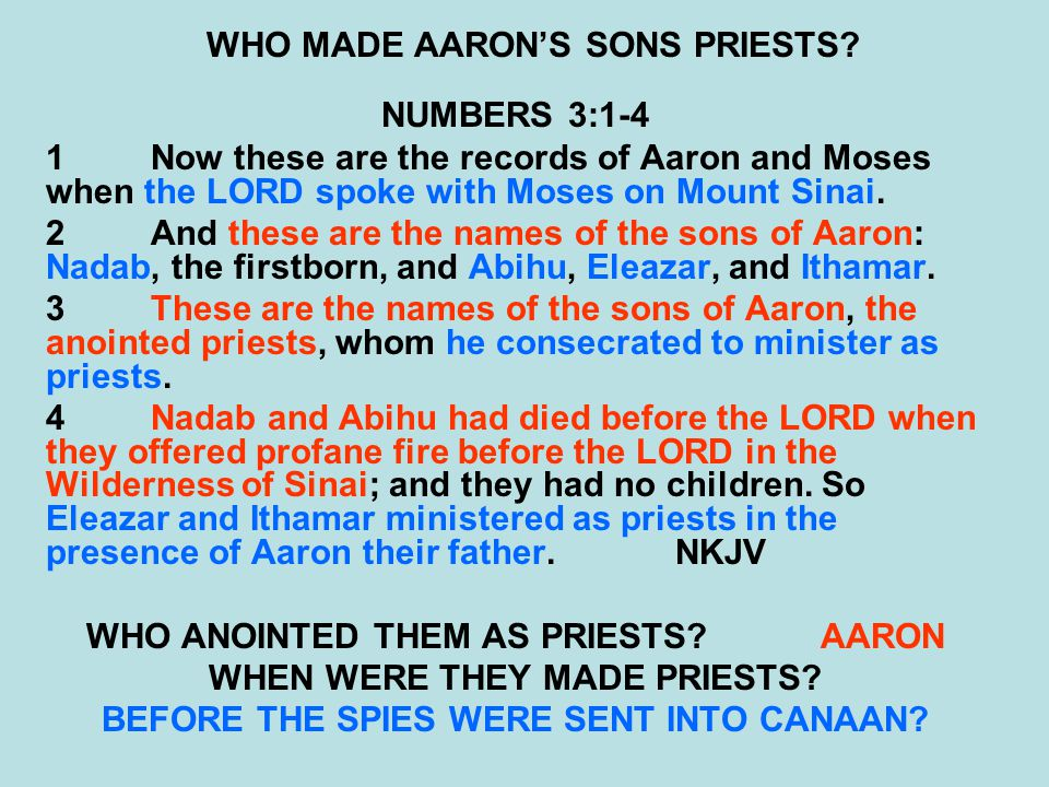 WHO MADE AARON'S SONS PRIESTS.