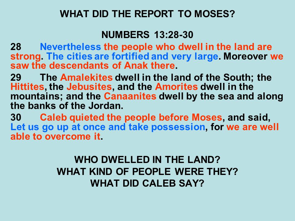 WHAT DID THE REPORT TO MOSES? NUMBERS 13:28-30 28Nevertheless the people who dwell in the land are strong. The cities are fortified and very large. Mo