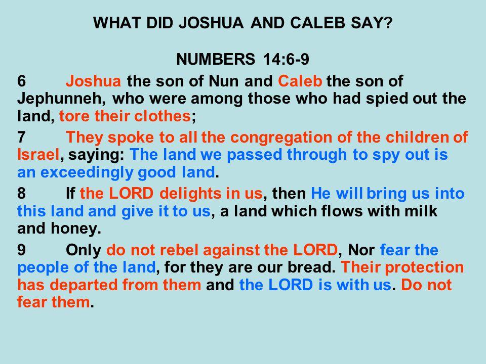 WHAT DID JOSHUA AND CALEB SAY.