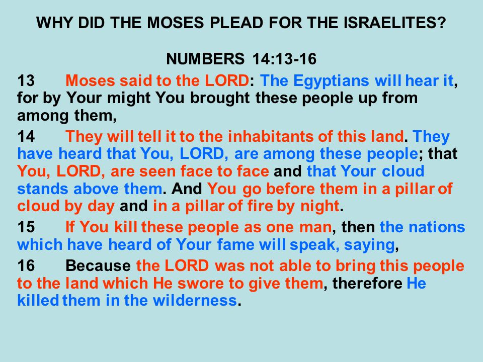 WHY DID THE MOSES PLEAD FOR THE ISRAELITES.
