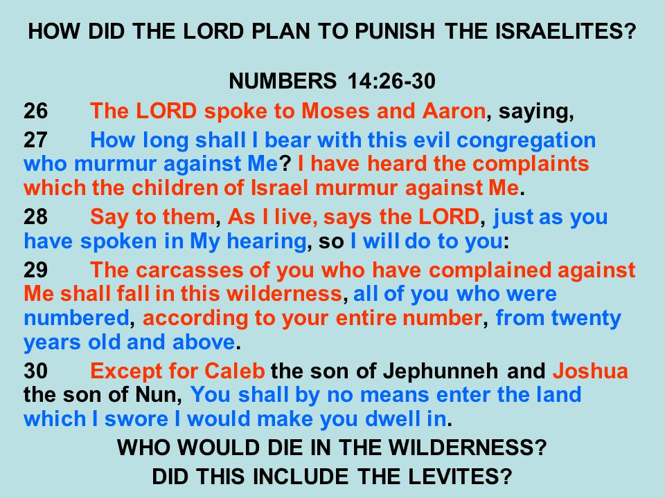 HOW DID THE LORD PLAN TO PUNISH THE ISRAELITES? NUMBERS 14:26-30 26The LORD spoke to Moses and Aaron, saying, 27How long shall I bear with this evil c