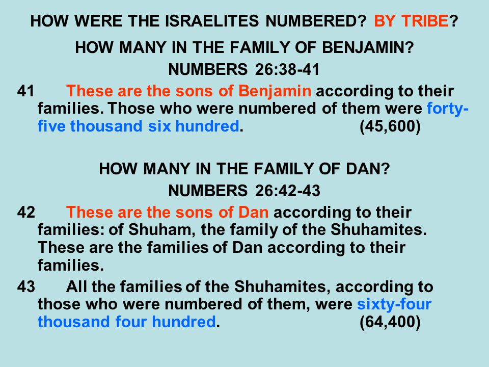 HOW WERE THE ISRAELITES NUMBERED? BY TRIBE? HOW MANY IN THE FAMILY OF BENJAMIN? NUMBERS 26:38-41 41These are the sons of Benjamin according to their f