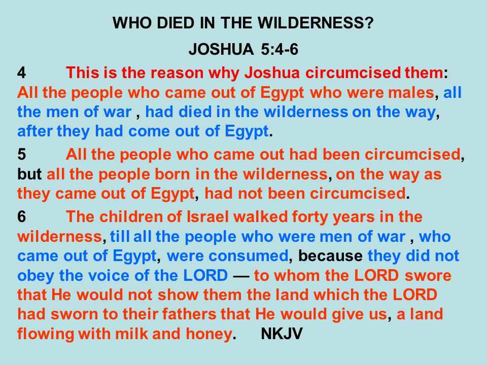 WHO DIED IN THE WILDERNESS? JOSHUA 5:4-6 4This is the reason why Joshua circumcised them: All the people who came out of Egypt who were males, all the