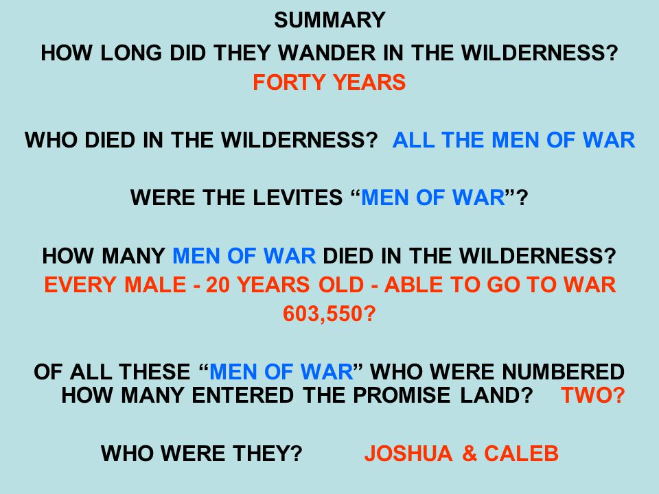 SUMMARY HOW LONG DID THEY WANDER IN THE WILDERNESS.
