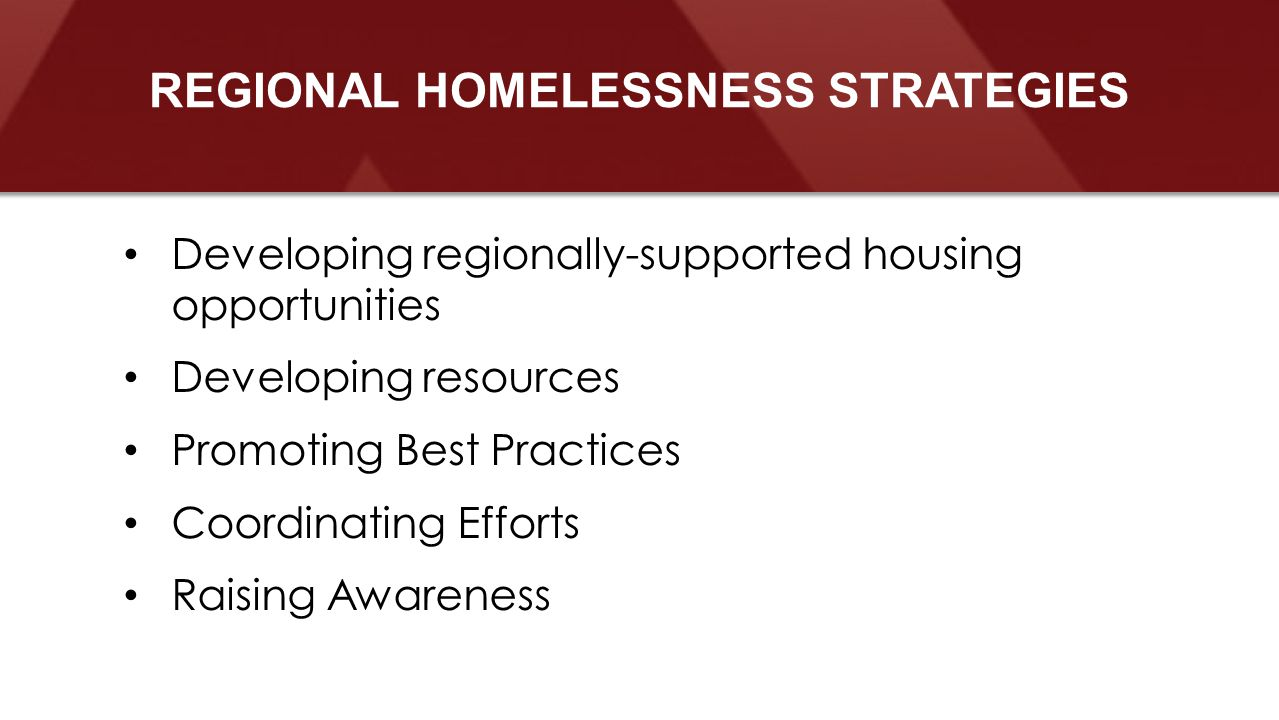 Developing regionally-supported housing opportunities Developing resources Promoting Best Practices Coordinating Efforts Raising Awareness REGIONAL HOMELESSNESS STRATEGIES