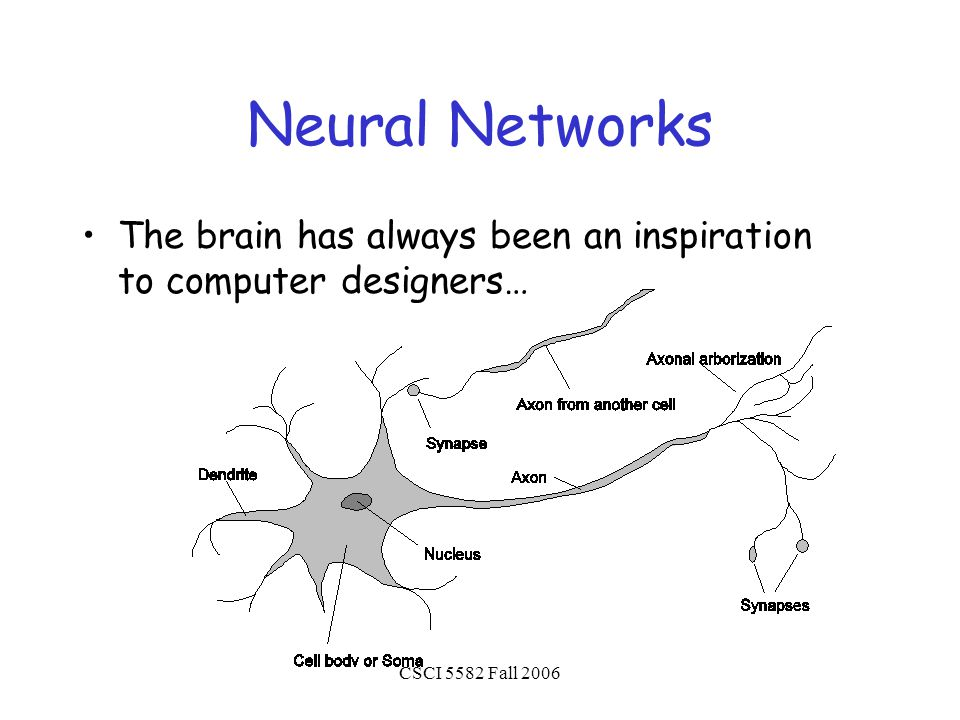 CSCI 5582 Fall 2006 Neural Networks The brain has always been an inspiration to computer designers…