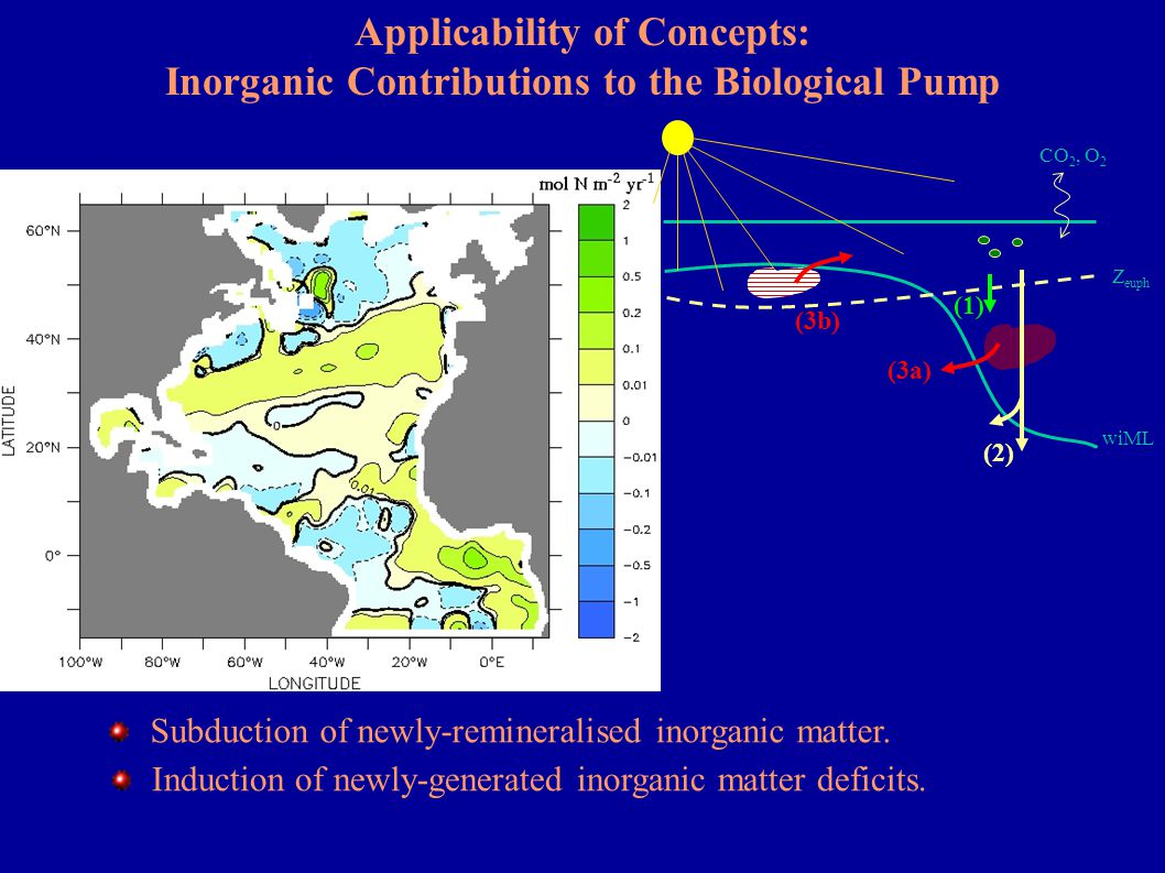 Applicability of Concepts: Inorganic Contributions to the Biological Pump Z euph wiML CO 2, O 2 (3a) (2) (1) Subduction of newly-remineralised inorgan