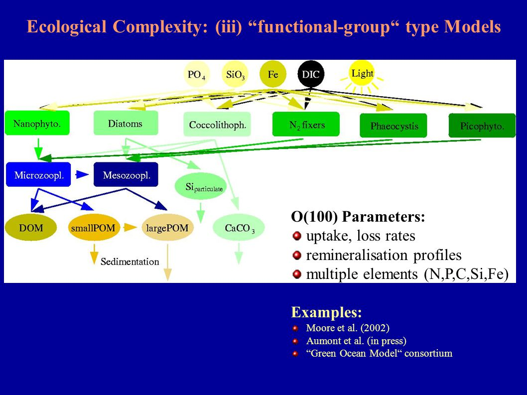 "Ecological Complexity: (iii) ""functional-group"" type Models O(100) Parameters: uptake, loss rates remineralisation profiles multiple elements (N,P,C,S"