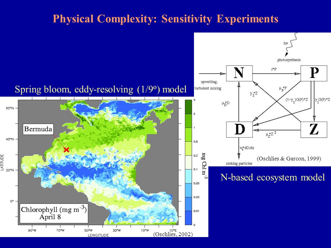Net community production (0-wiML) Applicability of Concepts: Simulated Net Community Production and Air-Sea Exchange II Biotically effected air-sea flux Winter mixed layer depth is more appropriate reference depth!