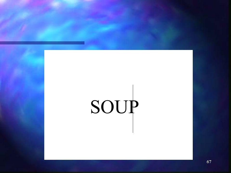 67 SOUP