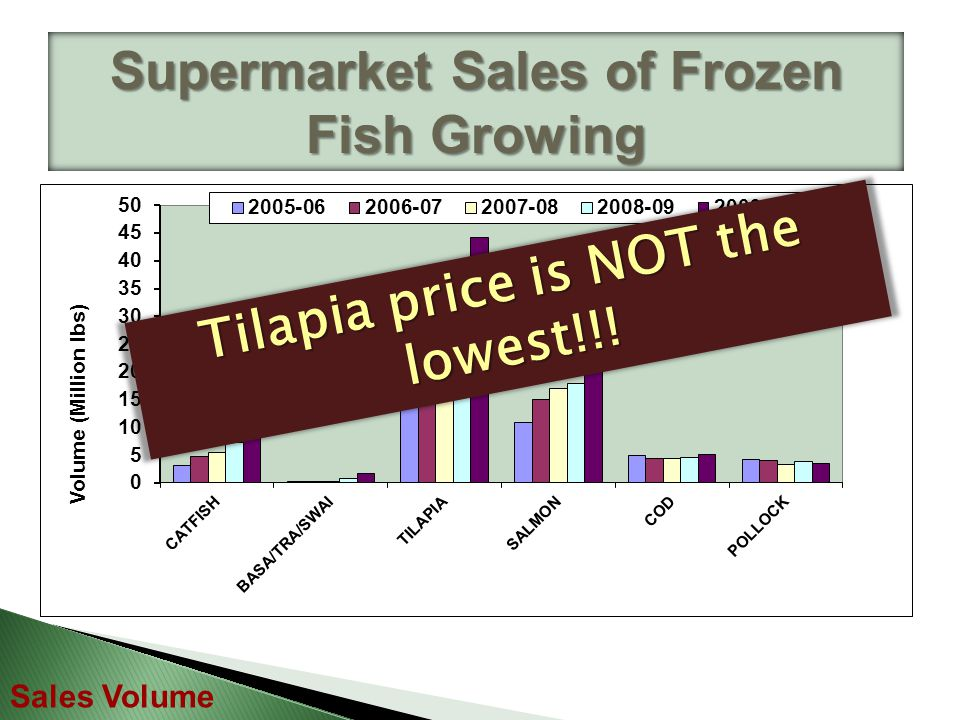 Supermarket Sales of Frozen Fish Growing Sales Volume Tilapia price is NOT the lowest!!!