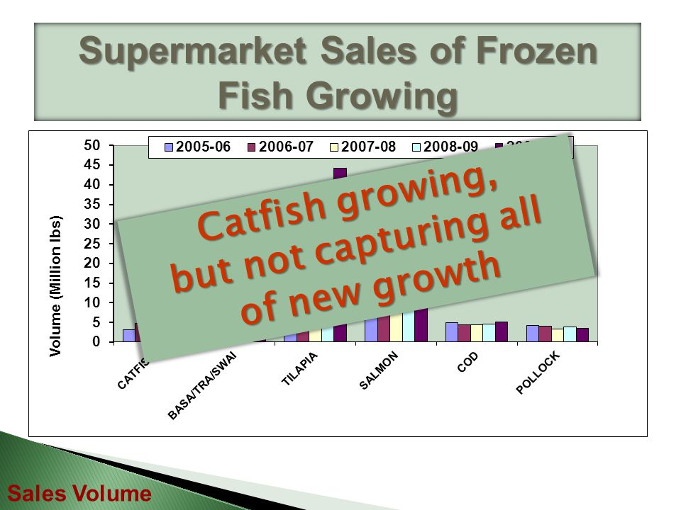 Supermarket Sales of Frozen Fish Growing Sales Volume Tilapia capturing most of new growth of new growth