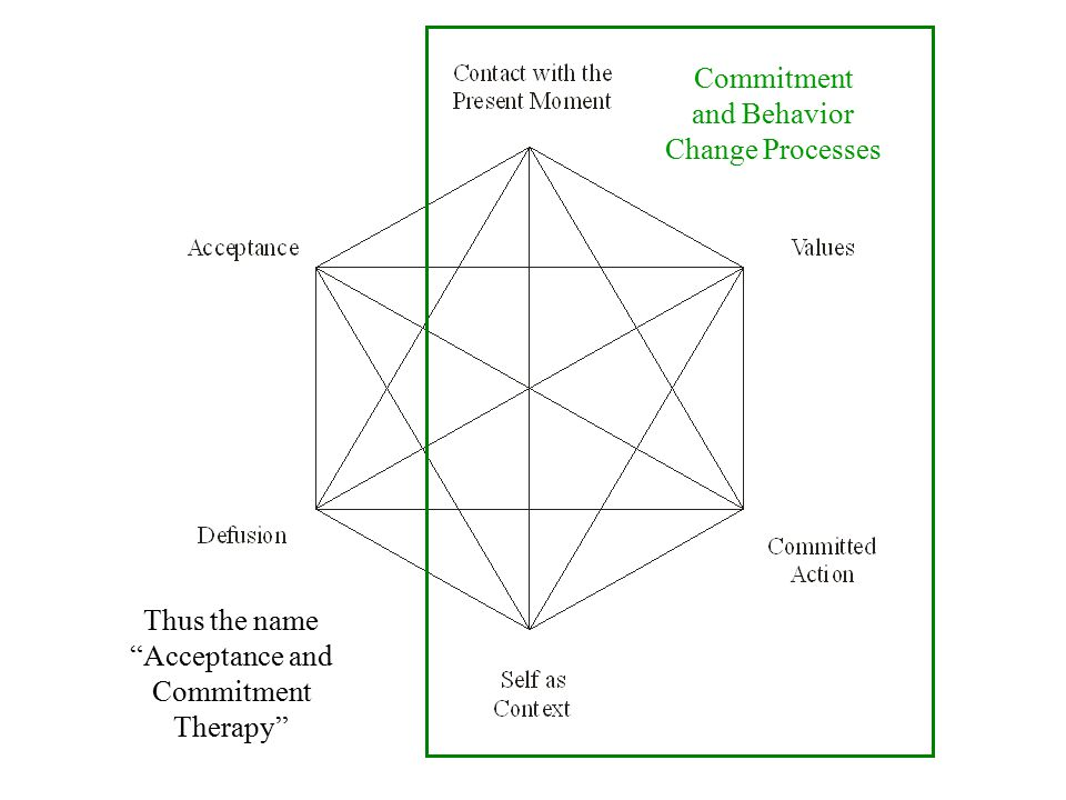 Commitment and Behavior Change Processes Thus the name Acceptance and Commitment Therapy and