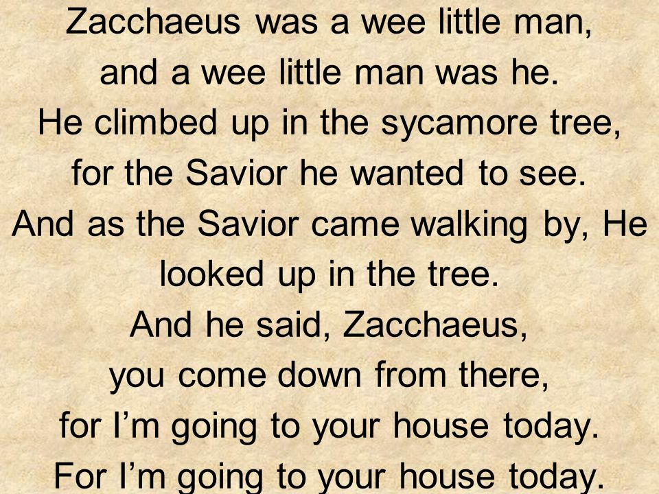 Zacchaeus was a wee little man, and a wee little man was he. He climbed up in the sycamore tree, for the Savior he wanted to see. And as the Savior ca