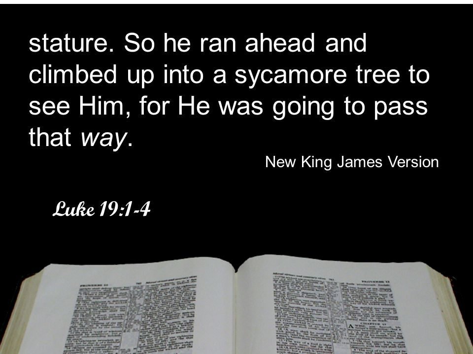 stature. So he ran ahead and climbed up into a sycamore tree to see Him, for He was going to pass that way. New King James Version Luke 19:1-4 stature