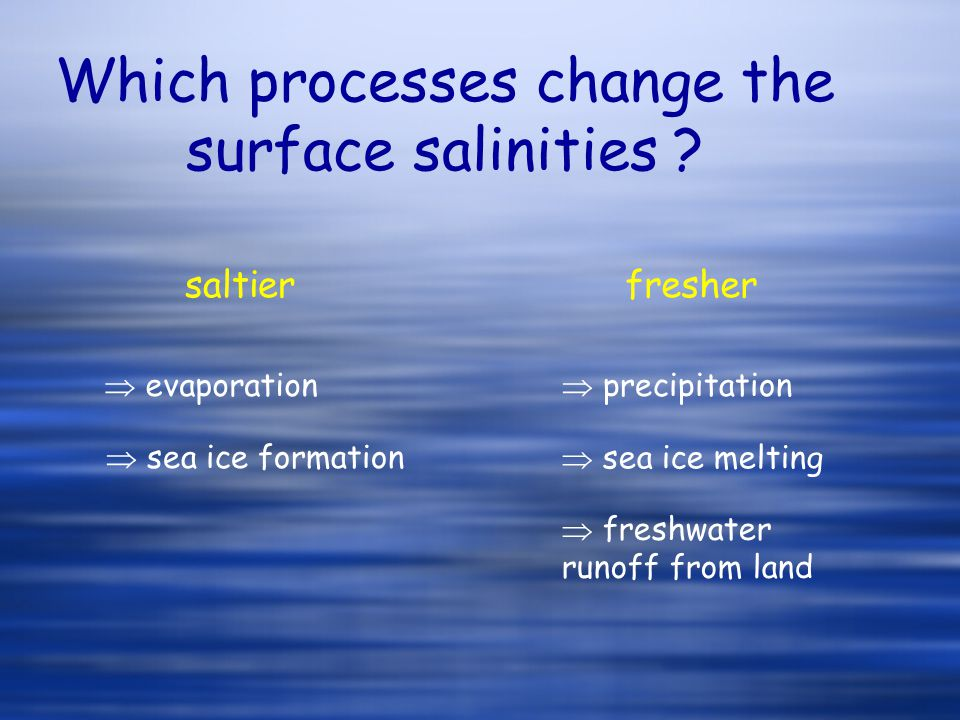 Which processes change the surface salinities ? saltierfresher  evaporation  precipitation  sea ice formation  sea ice melting  freshwater runoff