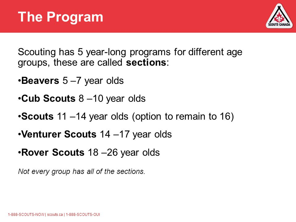 1-888-SCOUTS-NOW | scouts.ca | 1-888-SCOUTS-OUI The Program Scouting has 5 year-long programs for different age groups, these are called sections: Beavers 5 –7 year olds Cub Scouts 8 –10 year olds Scouts 11 –14 year olds (option to remain to 16) Venturer Scouts 14 –17 year olds Rover Scouts 18 –26 year olds Not every group has all of the sections.