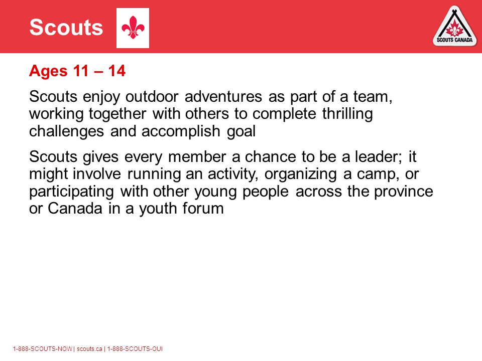 1-888-SCOUTS-NOW | scouts.ca | 1-888-SCOUTS-OUI Scouts Ages 11 – 14 Scouts enjoy outdoor adventures as part of a team, working together with others to complete thrilling challenges and accomplish goal Scouts gives every member a chance to be a leader; it might involve running an activity, organizing a camp, or participating with other young people across the province or Canada in a youth forum