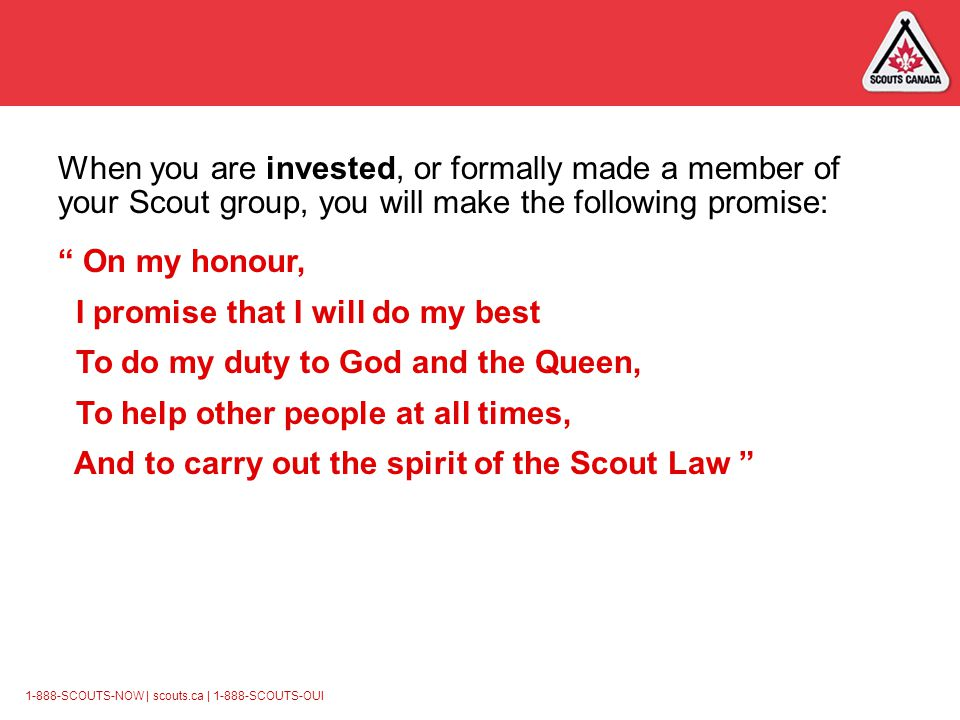 1-888-SCOUTS-NOW | scouts.ca | 1-888-SCOUTS-OUI When you are invested, or formally made a member of your Scout group, you will make the following promise: On my honour, I promise that I will do my best To do my duty to God and the Queen, To help other people at all times, And to carry out the spirit of the Scout Law
