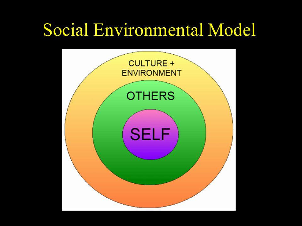 Social Environmental Model