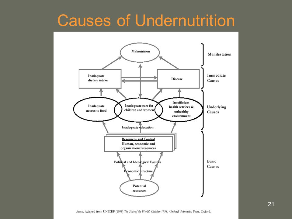 21 Causes of Undernutrition