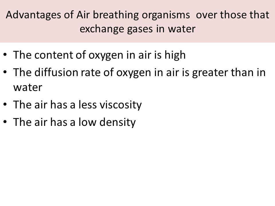 Advantages of Air breathing organisms over those that exchange gases in water The content of oxygen in air is high The diffusion rate of oxygen in air