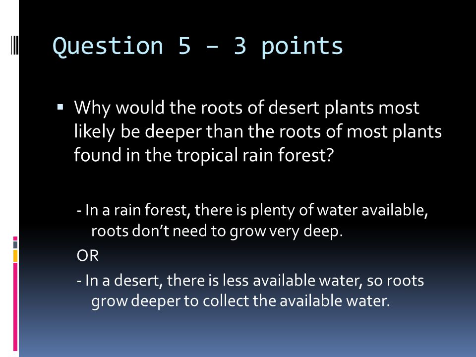 Question 5 – 3 points  Why would the roots of desert plants most likely be deeper than the roots of most plants found in the tropical rain forest.
