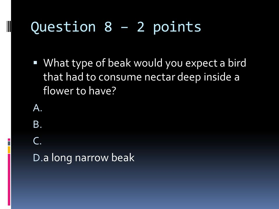 Question 8 – 2 points  What type of beak would you expect a bird that had to consume nectar deep inside a flower to have? A. B. C. D. a long narrow b