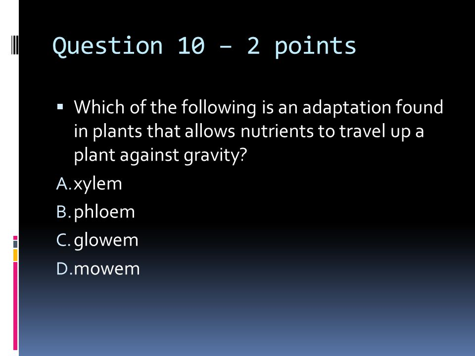 Question 10 – 2 points  Which of the following is an adaptation found in plants that allows nutrients to travel up a plant against gravity.