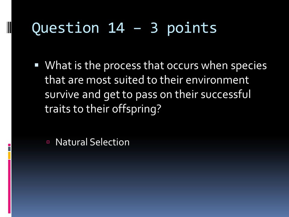 Question 14 – 3 points  What is the process that occurs when species that are most suited to their environment survive and get to pass on their succe