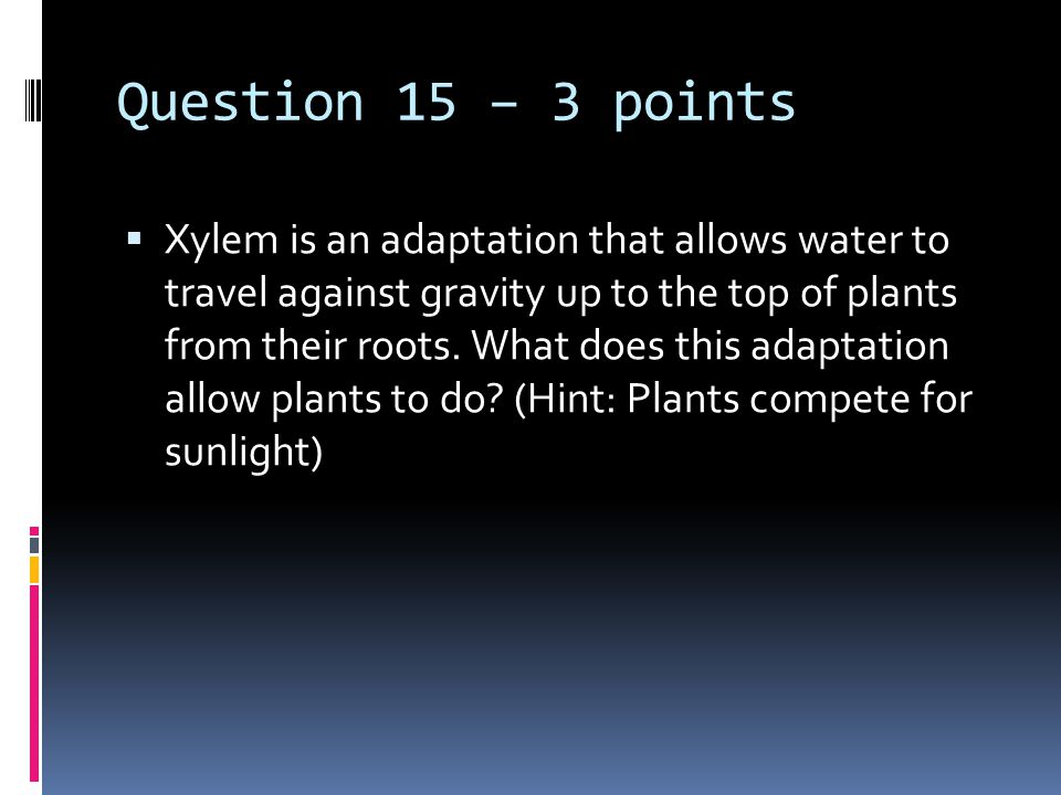 Question 15 – 3 points  Xylem is an adaptation that allows water to travel against gravity up to the top of plants from their roots. What does this a