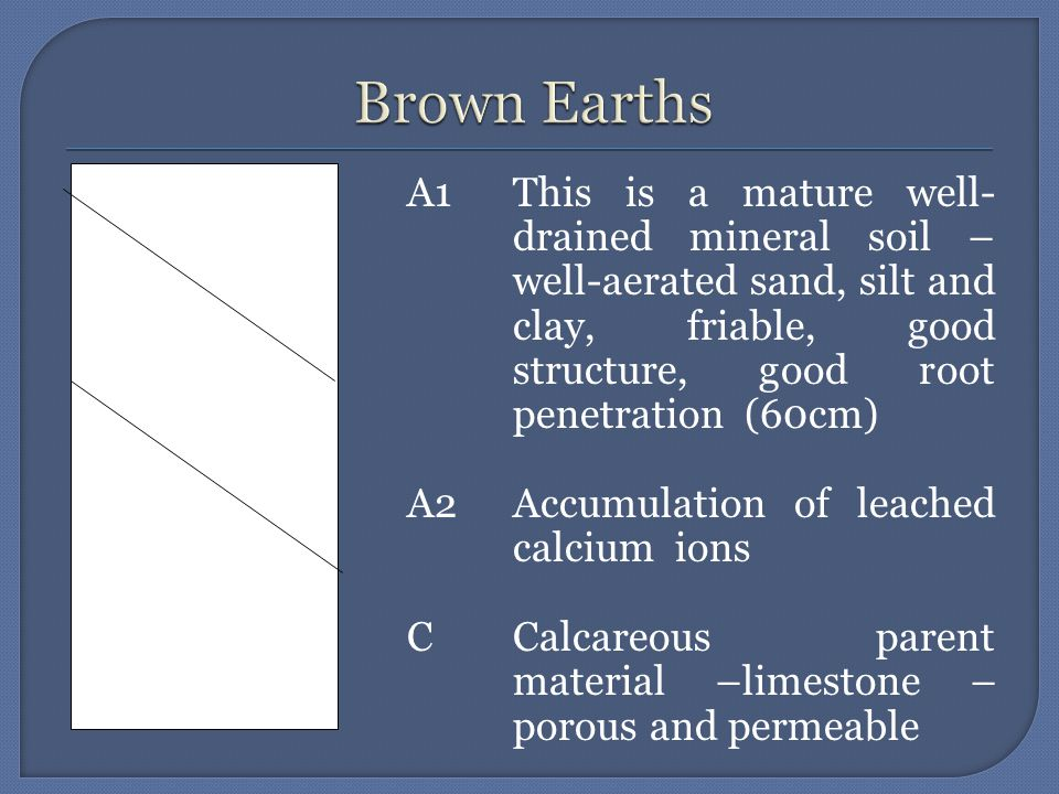  These soils are mature, well drained mineral soils.
