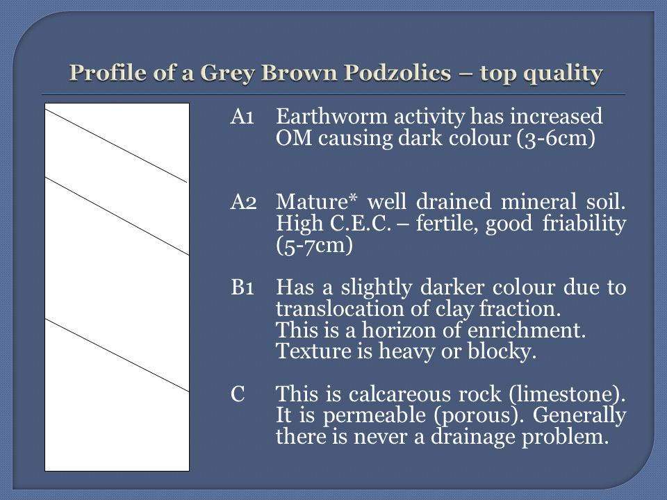 *Maturity –relatively stone free. This soil is used extensively for tillage (malting barley).