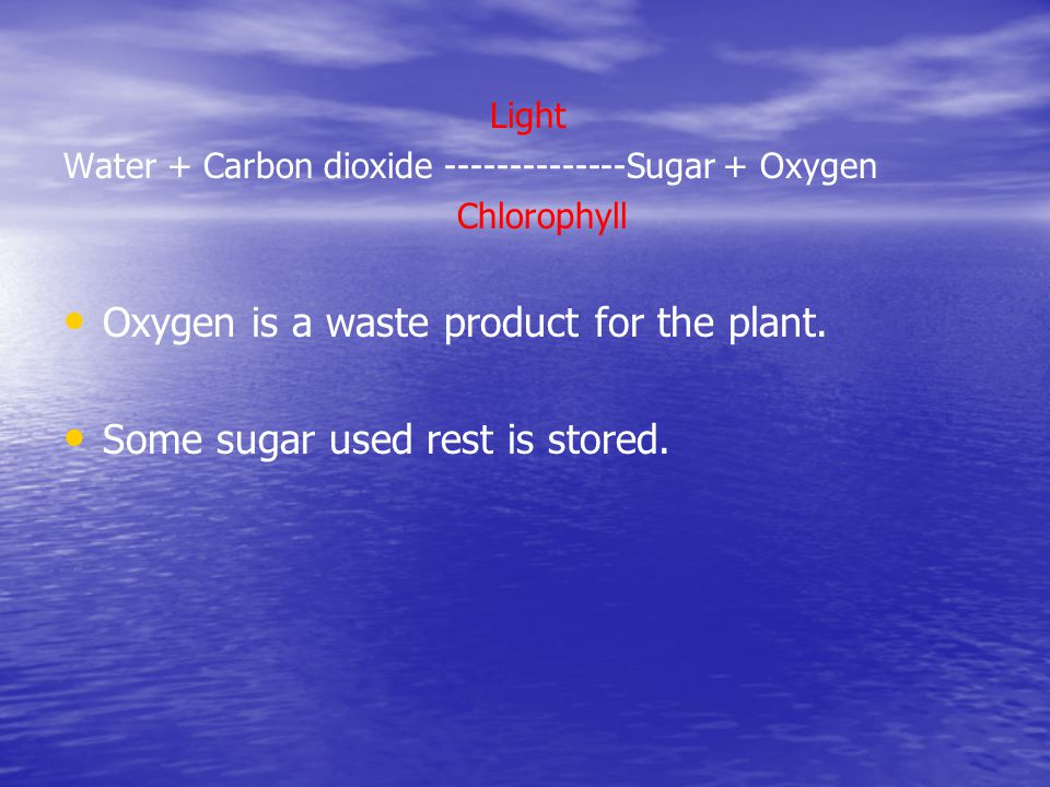 Light Water + Carbon dioxide --------------Sugar + Oxygen Chlorophyll Oxygen is a waste product for the plant. Some sugar used rest is stored.