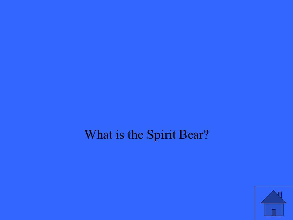 What is the Spirit Bear
