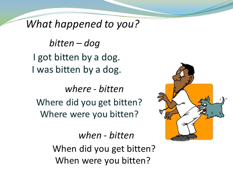 I got bitten by a dog. I was bitten by a dog. Where did you get bitten.