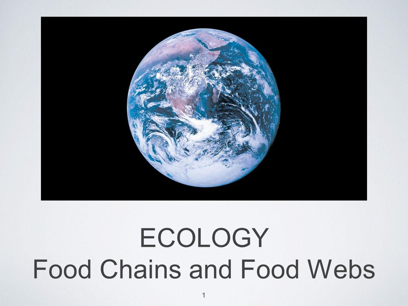ECOLOGY Food Chains and Food Webs 1