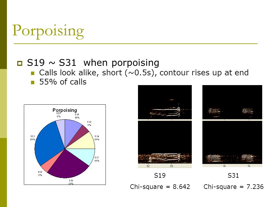 Porpoising  S19 ~ S31 when porpoising Calls look alike, short (~0.5s), contour rises up at end 55% of calls S19 Chi-square = 8.642 S31 Chi-square = 7