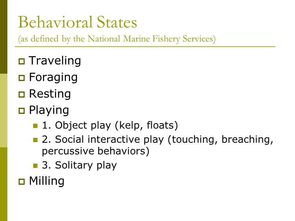 Behavioral States (as defined by the National Marine Fishery Services)  Traveling  Foraging  Resting  Playing 1. Object play (kelp, floats) 2. Soc