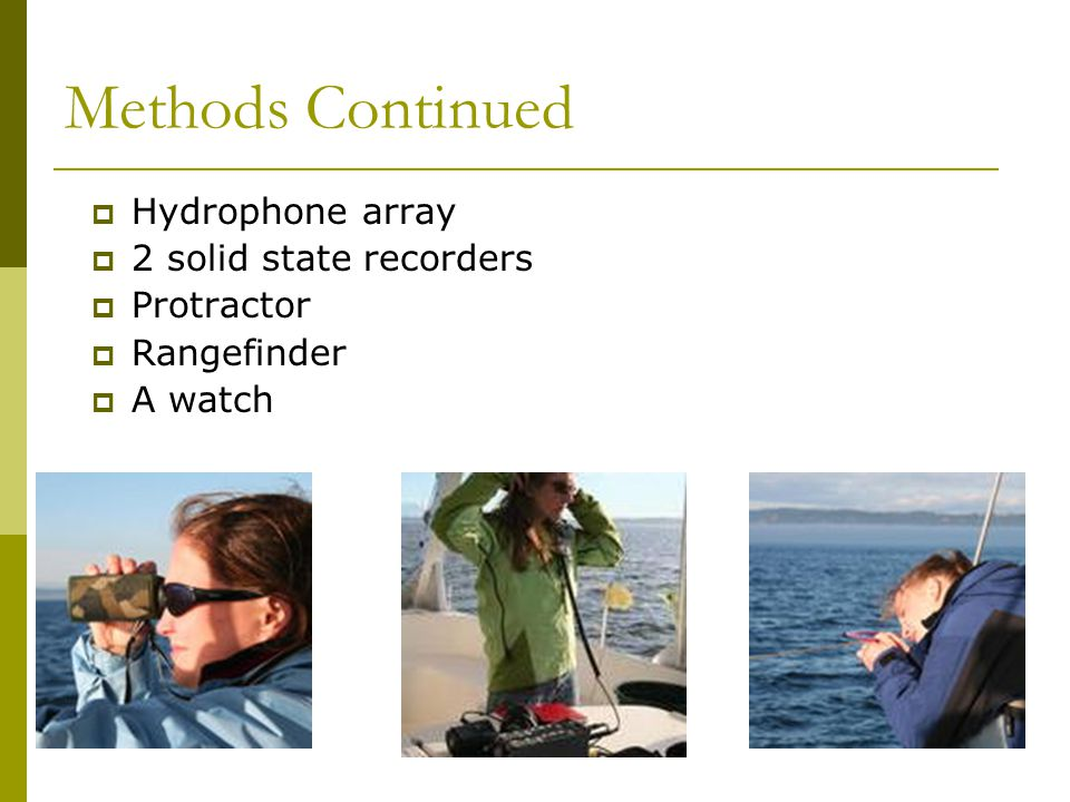 Methods Continued  Hydrophone array  2 solid state recorders  Protractor  Rangefinder  A watch
